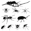 Vector Illustration: Insect collection isolated on white - Stock Vector