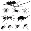 Vector Illustration: Insect collection isolated on white — Stock Vector #18115207