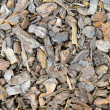 Tree bark chips — Stock Photo