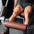 Training Quadriceps - Stock Photo