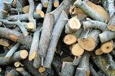 薪の山 — ストック写真