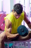 Biceps curl — Photo