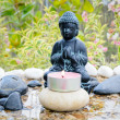 budha water garden — Stock Photo