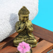 Spa Buddha — Stock Photo