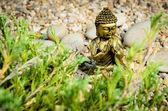 Buddha praying — Stock Photo