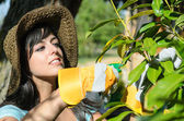 Woman pruning in garden — Stock Photo