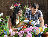 Couple caring garden — Stockfoto