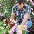 Male home gardener - Foto de Stock