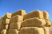 Bale and blue sky — Stock Photo