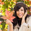 Autumn has arrived — Stock Photo