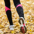 Royalty-Free Stock Photo: Autumn running