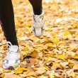 Royalty-Free Stock Photo: Running feet in autumn