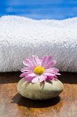 Мокрый розовый спа цветок и камень у бассейна — Стоковое фото