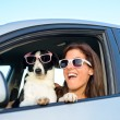 Womand dog fun in car — Stock Photo #26993011