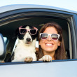 Funny woman with dog in car — Stockfoto #26993295