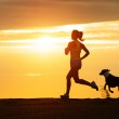 Woman and dog running on beach at sunset — Stock Photo #43991861