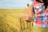 Success in agriculture business concept — ストック写真