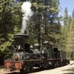 Steam Locomotive — Stock Photo #13453608