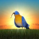 Early Bird — Stock Photo
