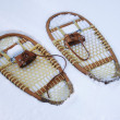 Stock Photo: Snow shoes