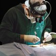 Stock Photo: Surgeon operating
