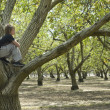 Tree Climber — Stock Photo