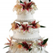 Deluxe wedding cake — Stock Photo #13457068
