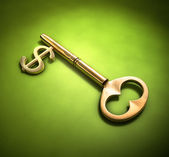 Key to wealth — Stock Photo
