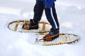 Snow shoeing — Stock Photo