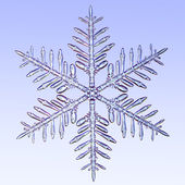 Microscopic snowflake — Stock Photo