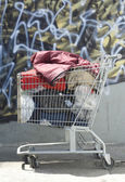 Homeless Shopping Cart — Stock Photo