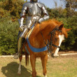 Knight on horseback vertical - Stock Photo