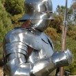 Knight close-up - Stock Photo