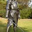 Knight with sword — Stock Photo #13470702