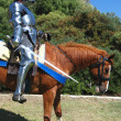 Knight on horseback — Stock Photo