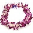 Hawaiian Lei - Stock Photo