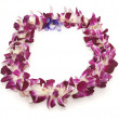 Hawaiian Lei — Stock Photo