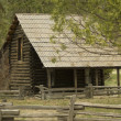 Log Cabin — Stock Photo #13471093