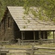 Log Cabin — Photo
