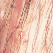 Pink marble background texture — Stock Photo