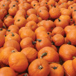 Pumpkins — Stock Photo #13472200