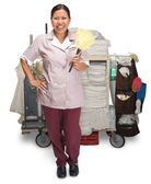 Housekeeping — Stock Photo