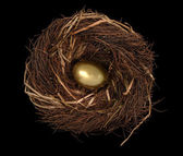 Nest Egg on Black — Stock Photo