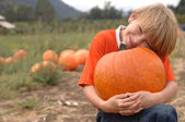 Pumpkin Niko2 — Stock Photo