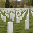 Stock Photo: Arlington Cemetery