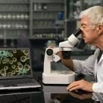 Bio tecnologia — Foto Stock