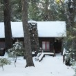 Winter cabin in forest - Stock Photo