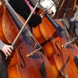 Cellists - Stock Photo