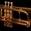 Cornet on black — Stock Photo