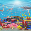 Underwater Paradise - Stock Photo